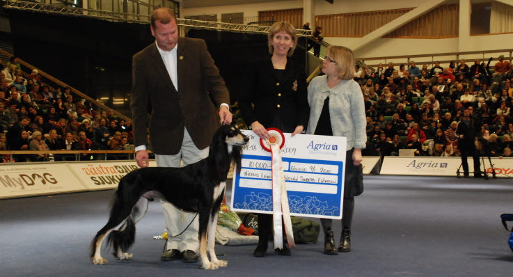 Harley - Årets Hund 2009 - Agria Djurförsäkring